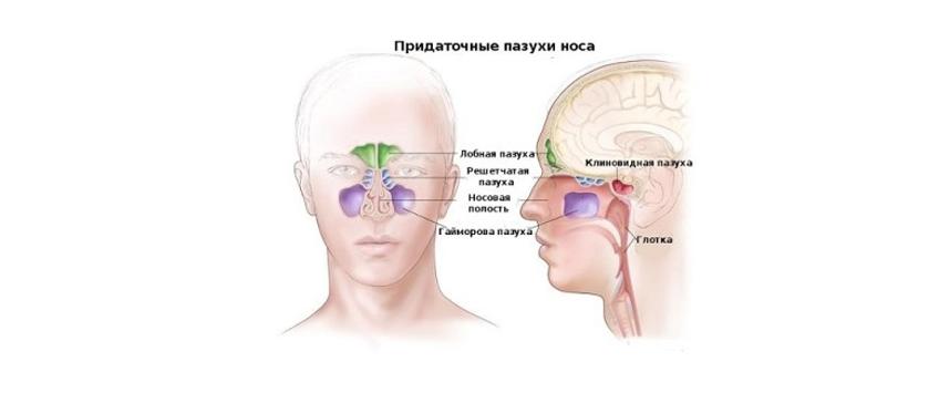 что показывает кт придаточных пазух носа